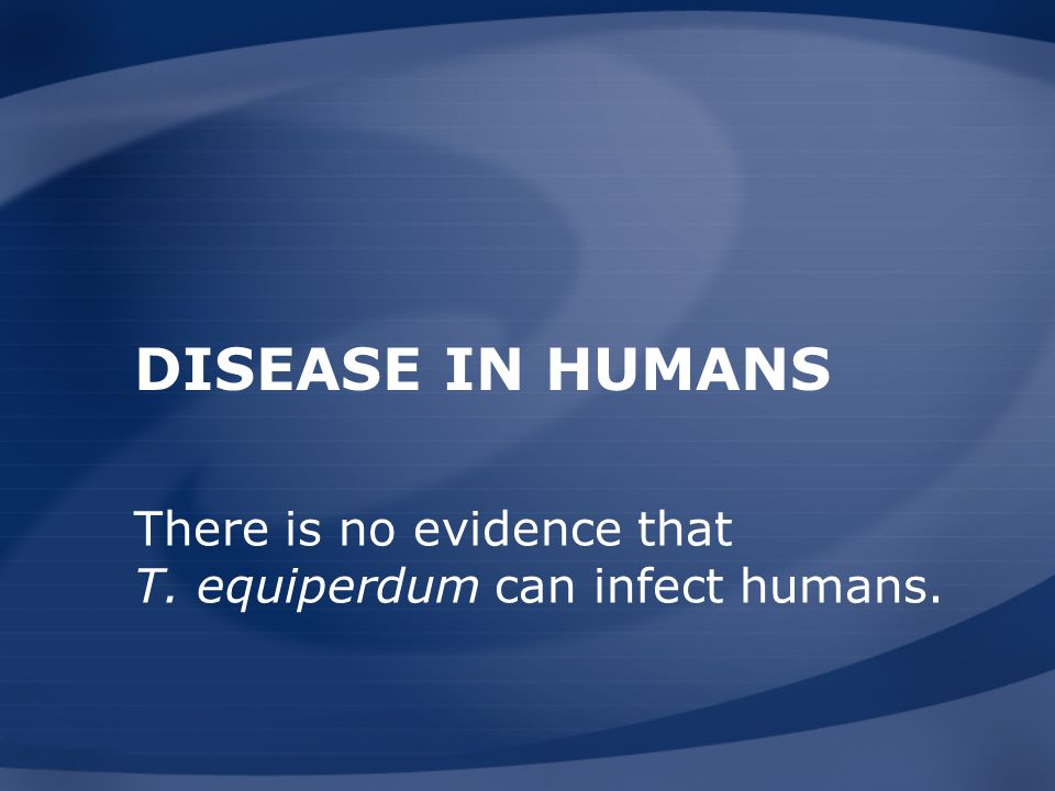 Disease in Humans There is no evidence that T. equiperdum can infect humans.