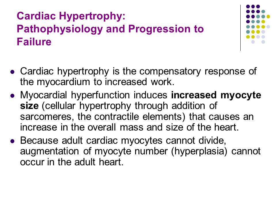 Cardiac Hypertrophy: Pathophysiology and Progression to Failure