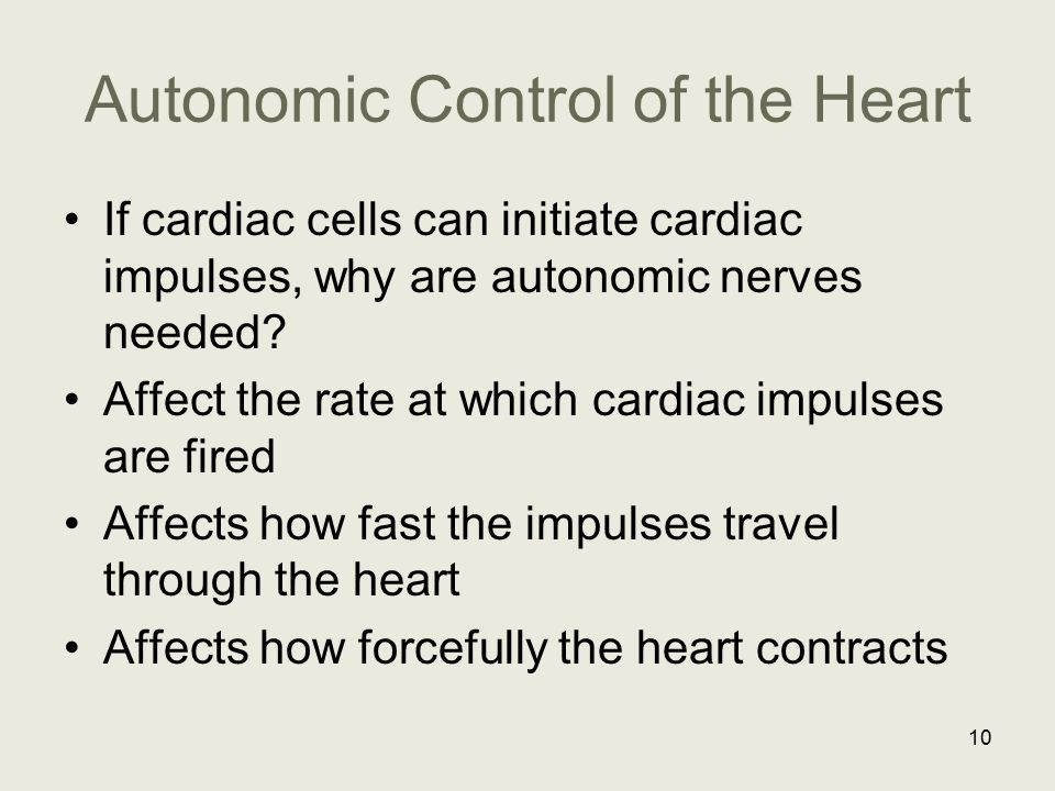 Autonomic Control of the Heart