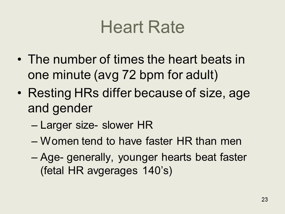 Heart Rate The number of times the heart beats in one minute (avg 72 bpm for adult) Resting HRs differ because of size, age and gender.