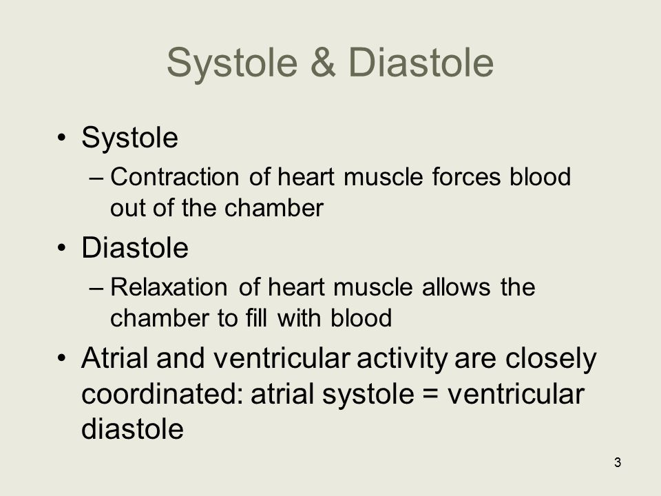 Systole & Diastole Systole Diastole