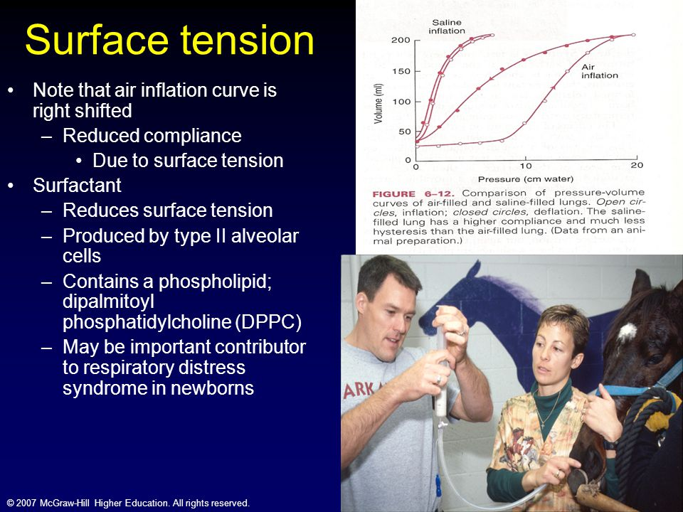 Surface tension Note that air inflation curve is right shifted