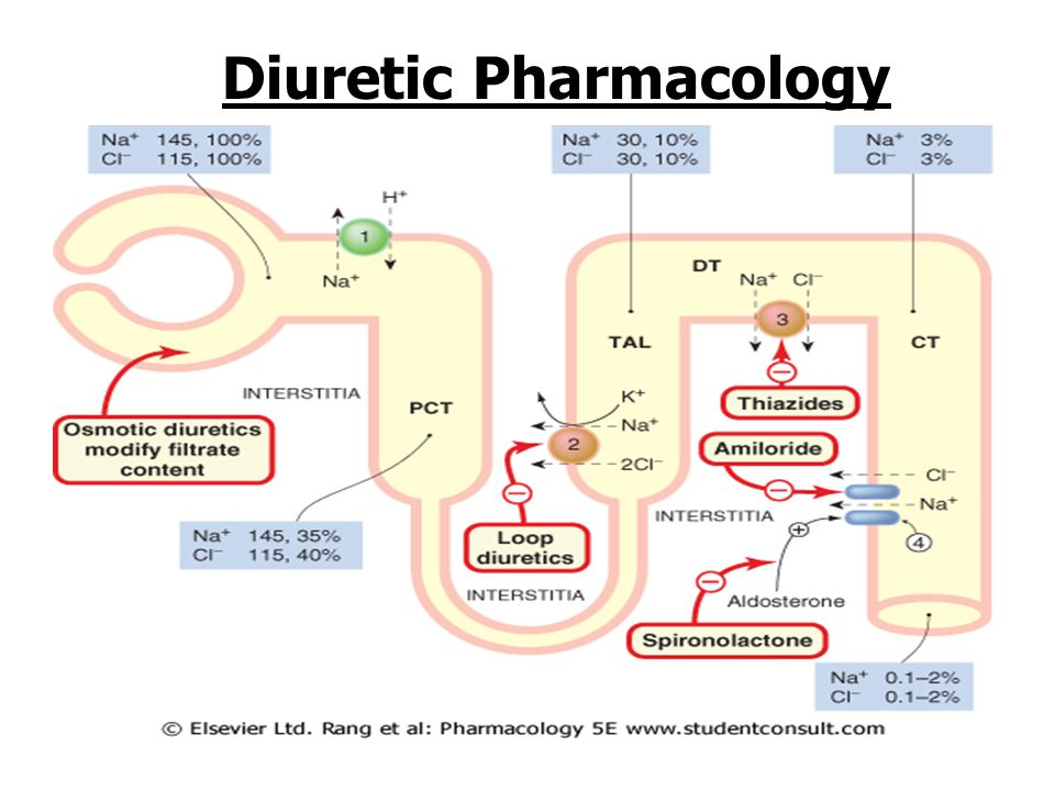 Diuretic Pharmacology