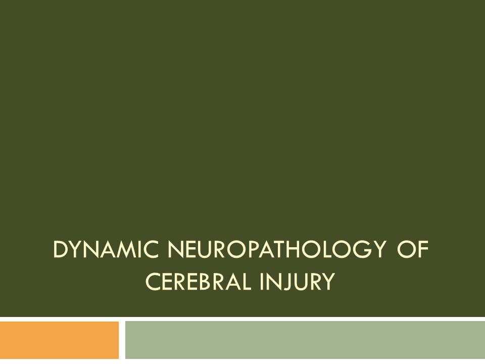 Dynamic Neuropathology of Cerebral Injury