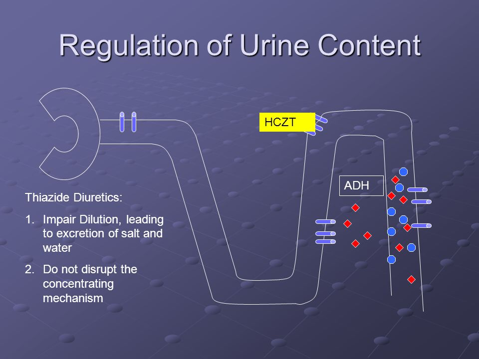 Regulation of Urine Content