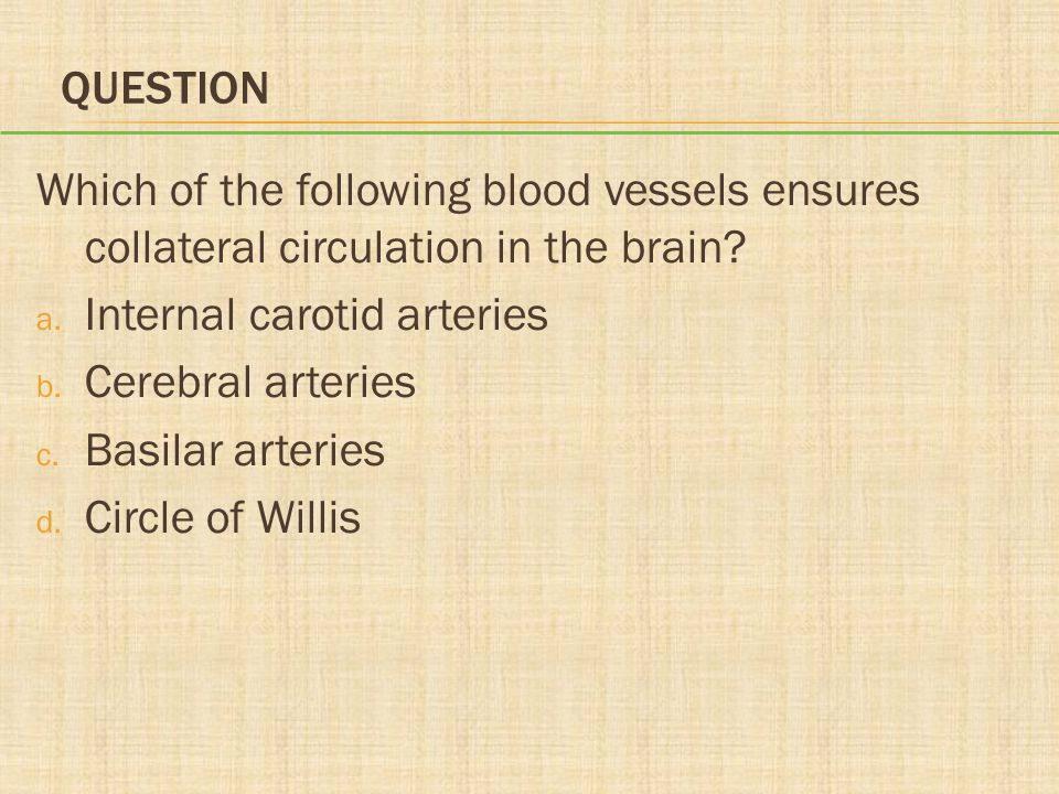 Question Which of the following blood vessels ensures collateral circulation in the brain Internal carotid arteries.