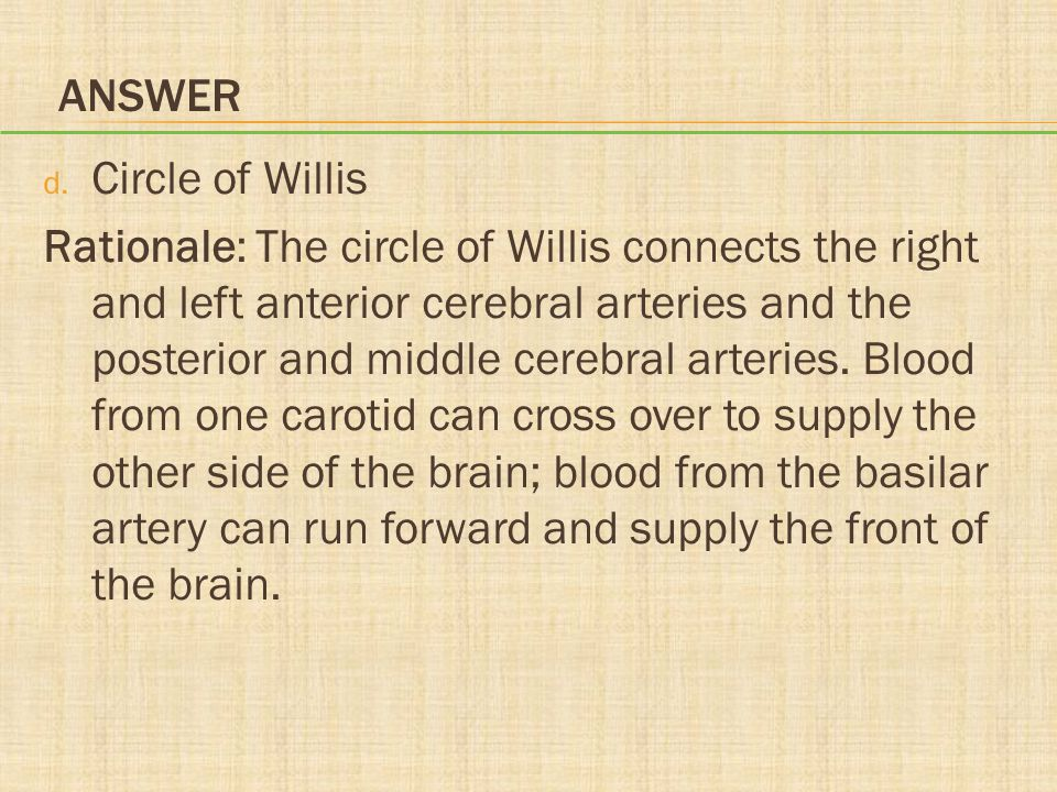 Answer Circle of Willis.