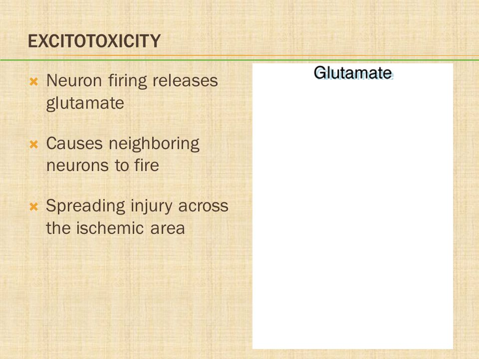 Excitotoxicity Neuron firing releases glutamate