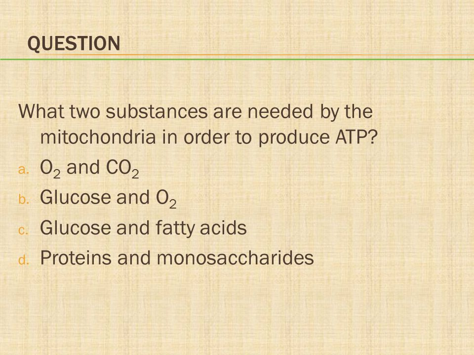 Question What two substances are needed by the mitochondria in order to produce ATP O2 and CO2. Glucose and O2.