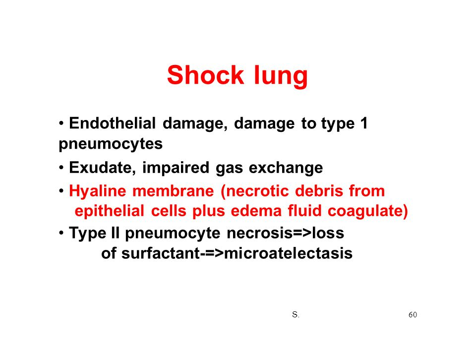 Shock lung • Endothelial damage, damage to type 1 pneumocytes