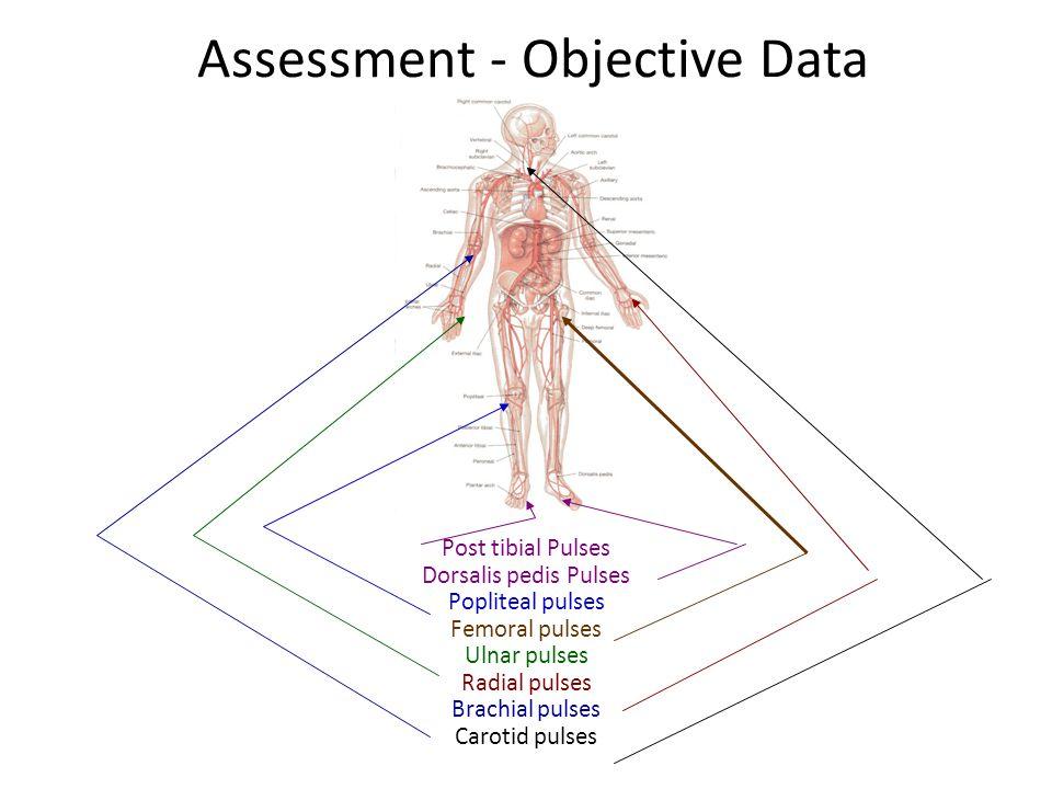 Assessment - Objective Data