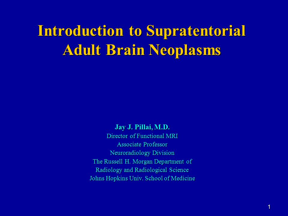 Introduction to Supratentorial Adult Brain Neoplasms