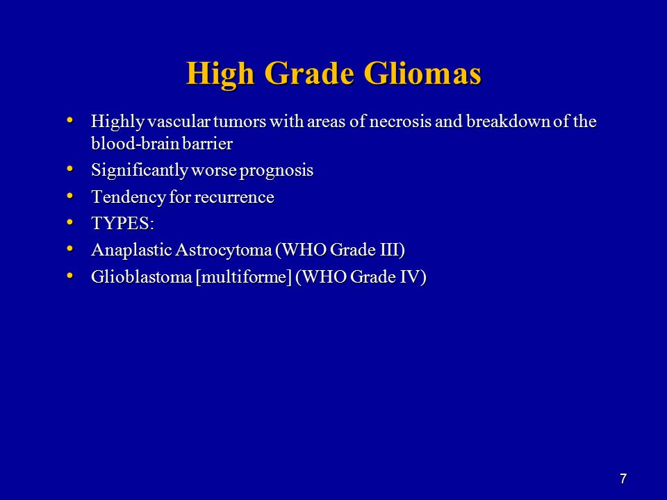 High Grade Gliomas Highly vascular tumors with areas of necrosis and breakdown of the blood-brain barrier.