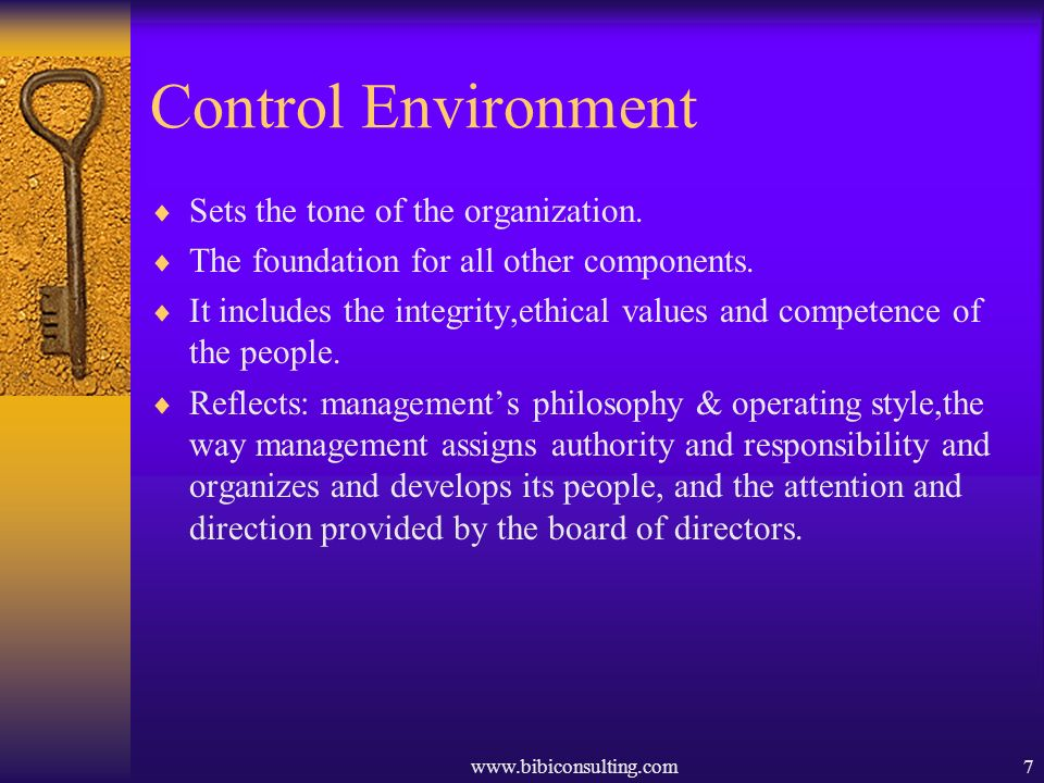 Control Environment Sets the tone of the organization.