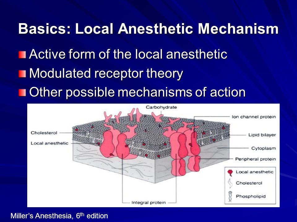 Basics: Local Anesthetic Mechanism