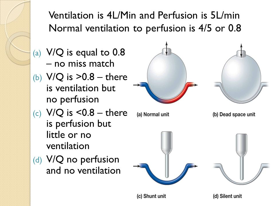 Ventilation is 4L/Min and Perfusion is 5L/min