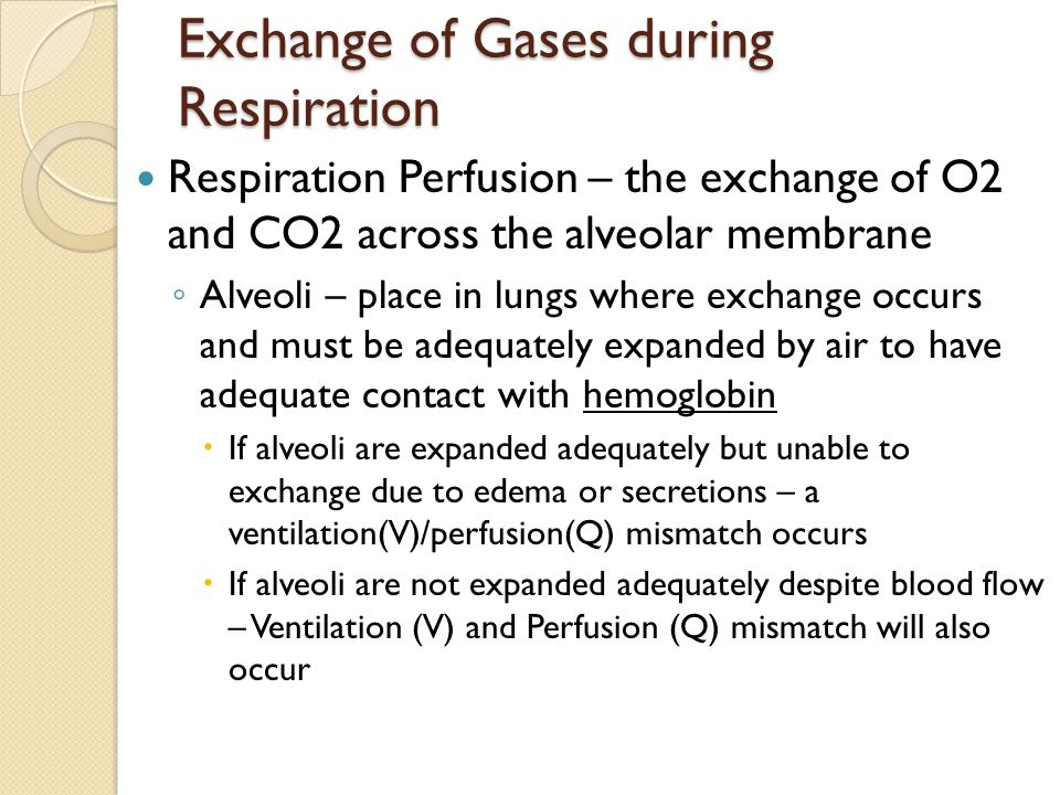 Exchange of Gases during Respiration