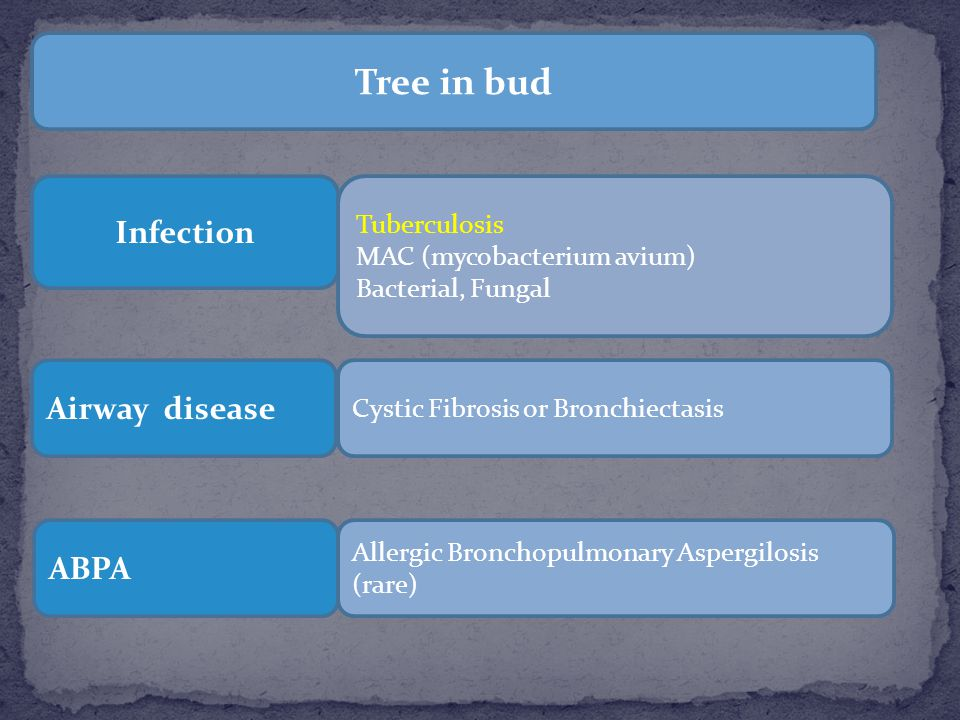 Tree in bud Infection Airway disease ABPA Tuberculosis