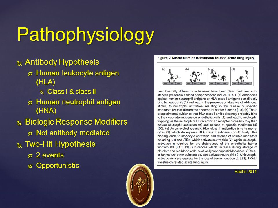 Pathophysiology Antibody Hypothesis Biologic Response Modifiers