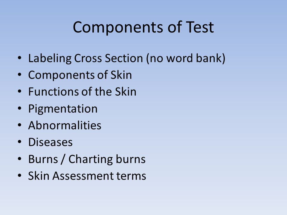 Components of Test Labeling Cross Section (no word bank)