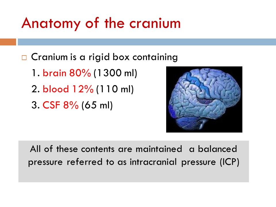 Anatomy of the cranium Cranium is a rigid box containing