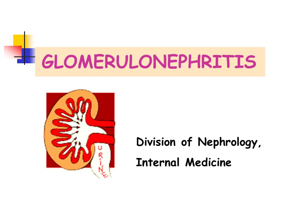 GLOMERULONEPHRITIS Division of Nephrology, Internal Medicine