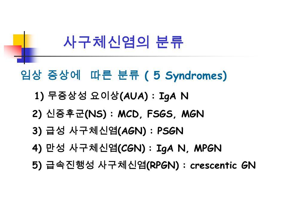 사구체신염의 분류 임상 증상에 따른 분류 ( 5 Syndromes) 1) 무증상성 요이상(AUA) : IgA N