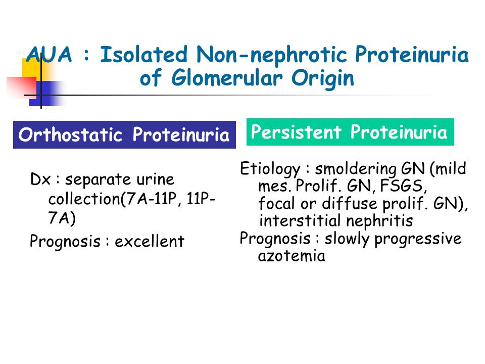 AUA : Isolated Non-nephrotic Proteinuria of Glomerular Origin