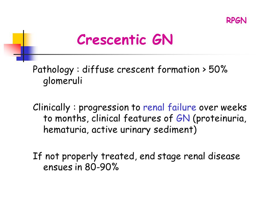 RPGN Crescentic GN. Pathology : diffuse crescent formation > 50% glomeruli.