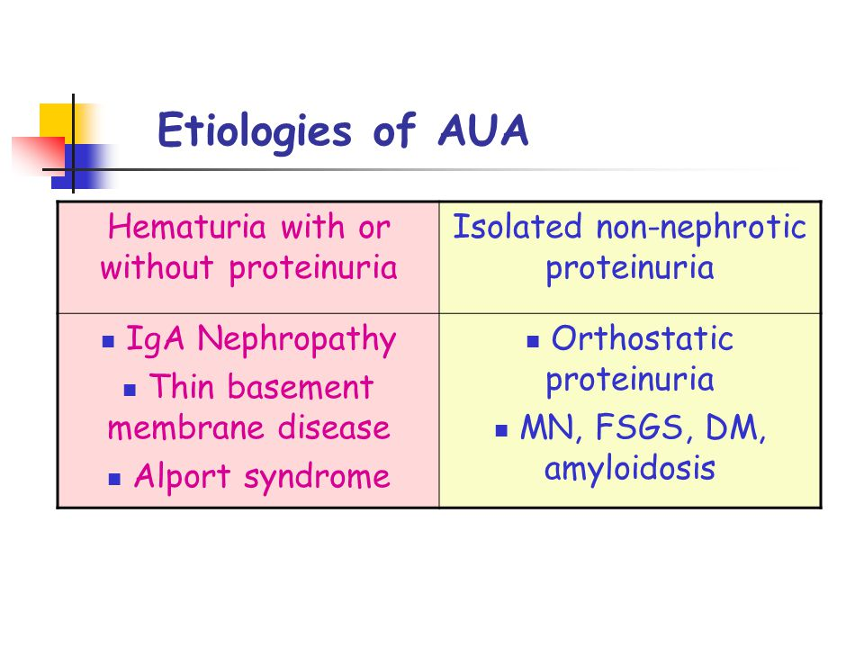 Etiologies of AUA Hematuria with or without proteinuria