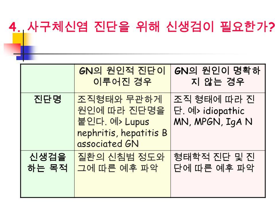 4. 사구체신염 진단을 위해 신생검이 필요한가 GN의 원인적 진단이 이루어진 경우 GN의 원인이 명확하지 않는 경우 진단명