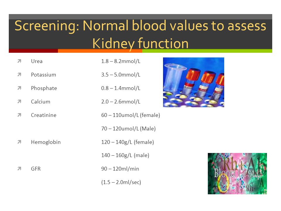 Screening: Normal blood values to assess Kidney function