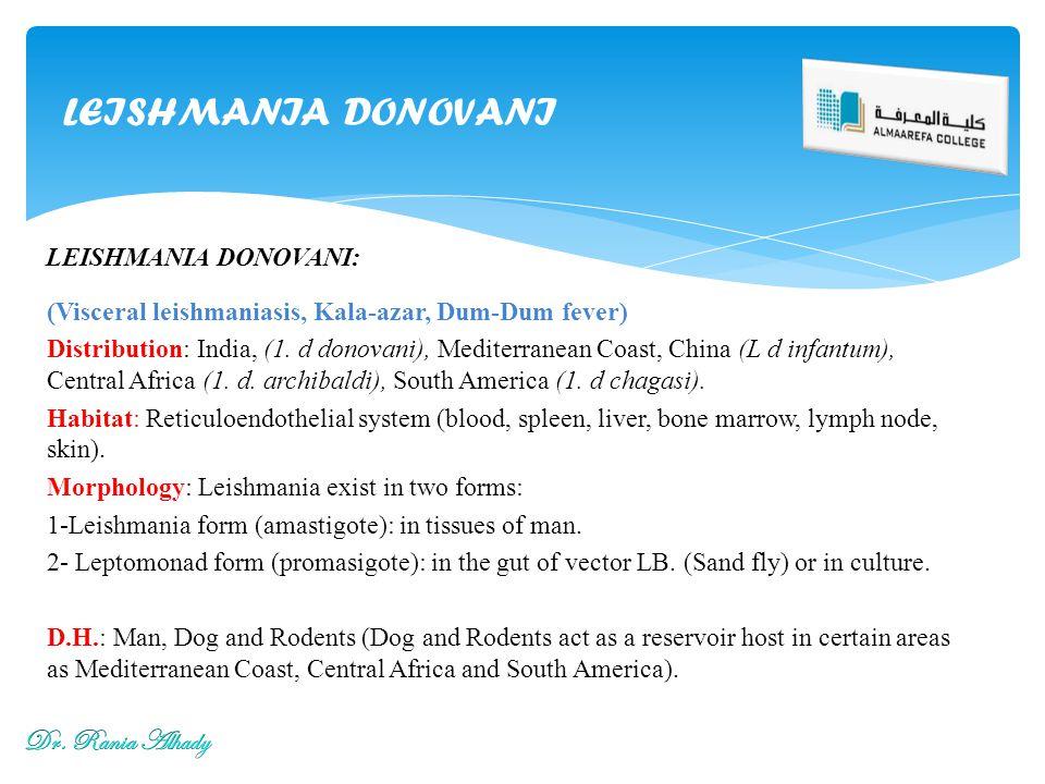 LEISHMANIA DONOVANI Dr. Rania Alhady