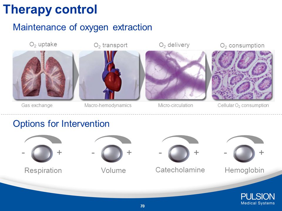 Therapy control - + - + - + - + Maintenance of oxygen extraction