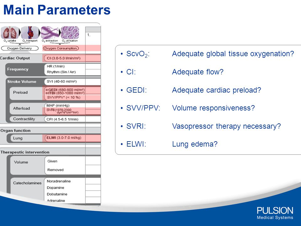 Main Parameters ScvO2: Adequate global tissue oxygenation