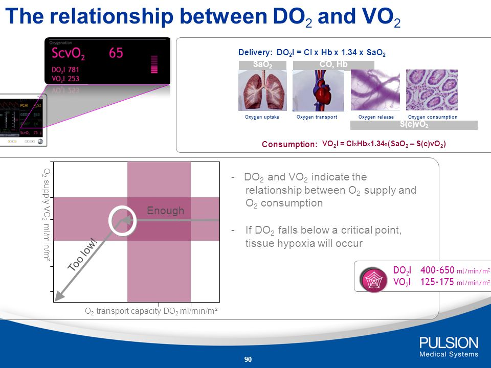 The relationship between DO2 and VO2