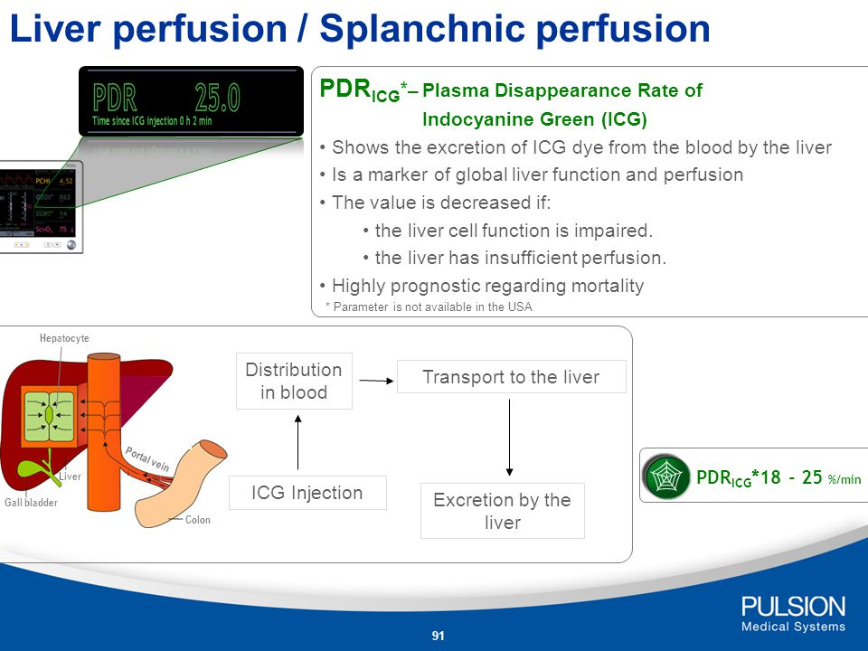 Liver perfusion / Splanchnic perfusion