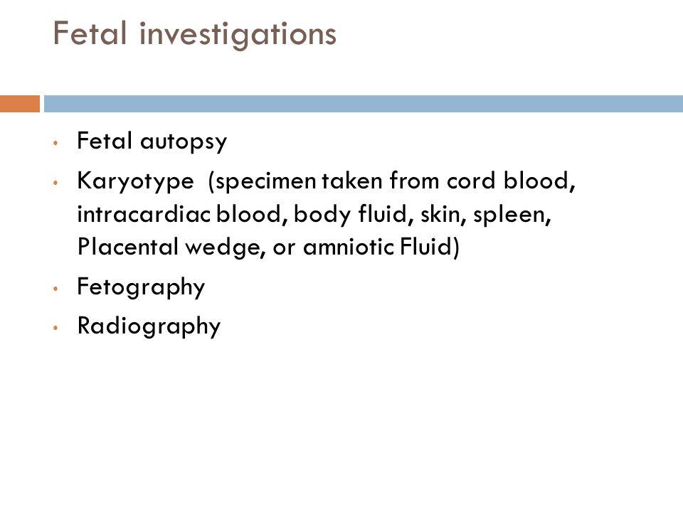 Fetal investigations Fetal autopsy