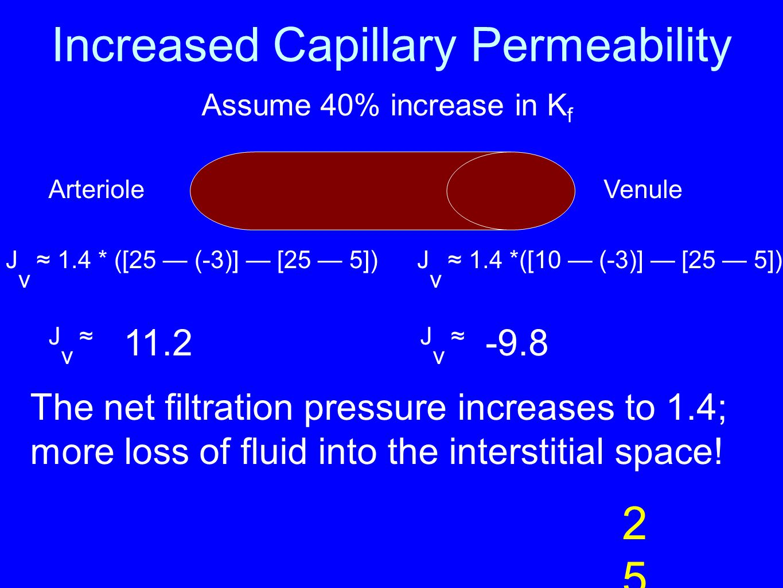 Increased Capillary Permeability