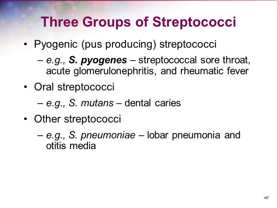 Three Groups of Streptococci