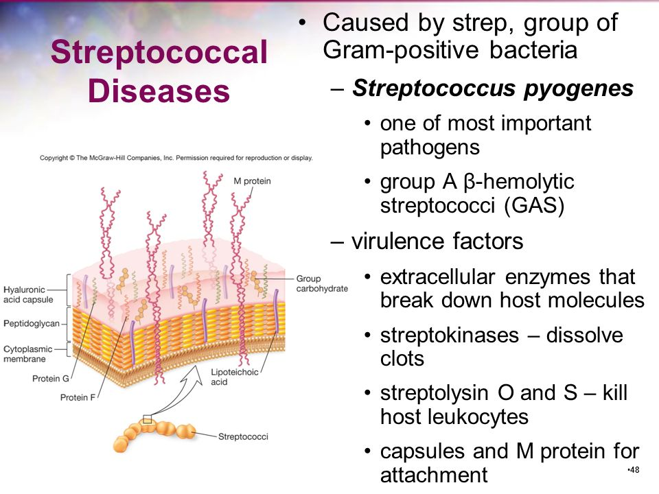 Streptococcal Diseases