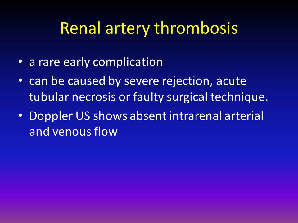 Renal artery thrombosis