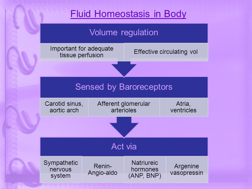 Fluid Homeostasis in Body