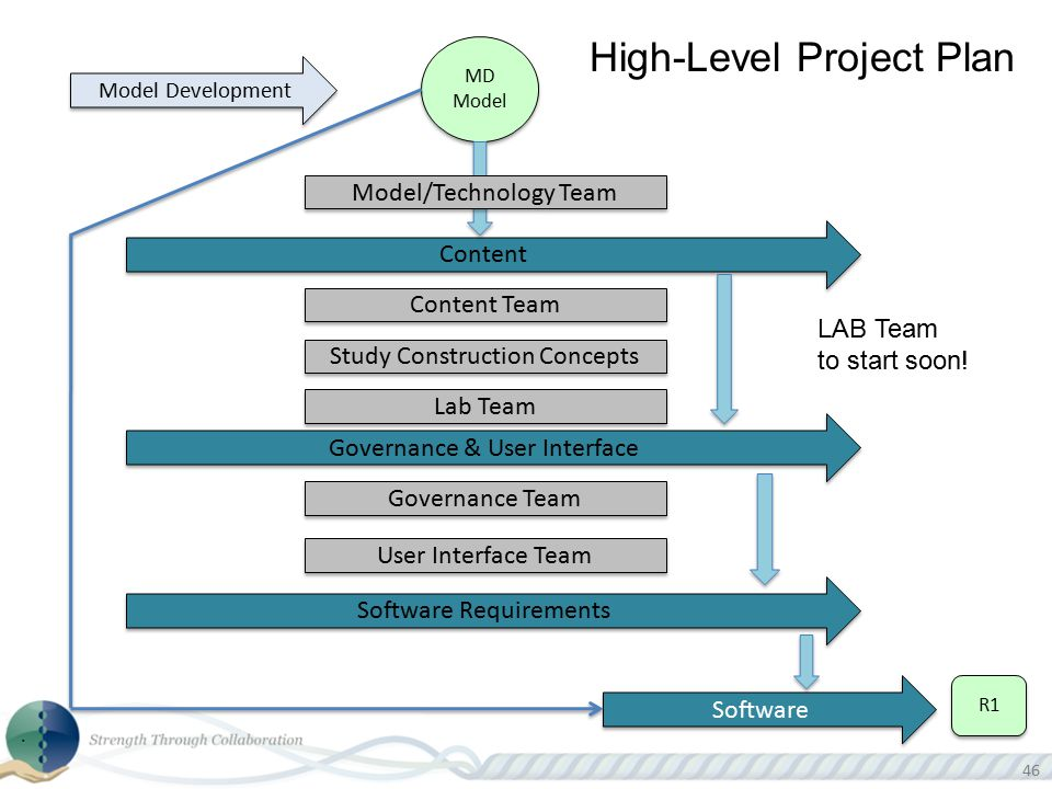 High-Level Project Plan