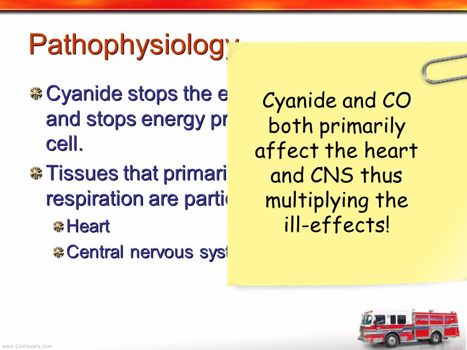 Pathophysiology Cyanide stops the electron transport chain and stops energy production (ATP) in the cell.