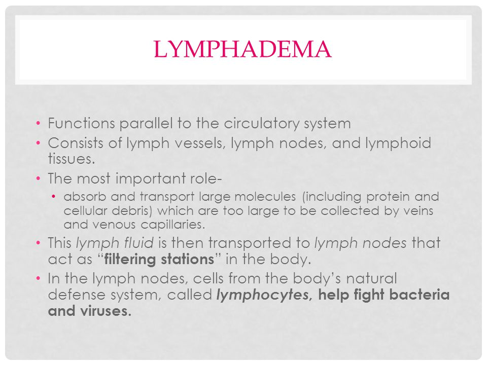 lymphadema Functions parallel to the circulatory system