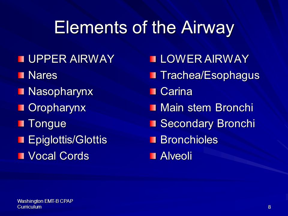 Elements of the Airway UPPER AIRWAY Nares Nasopharynx Oropharynx