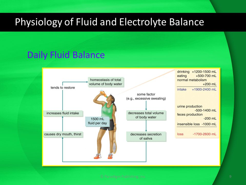 unit 13 physiology of fluid balance