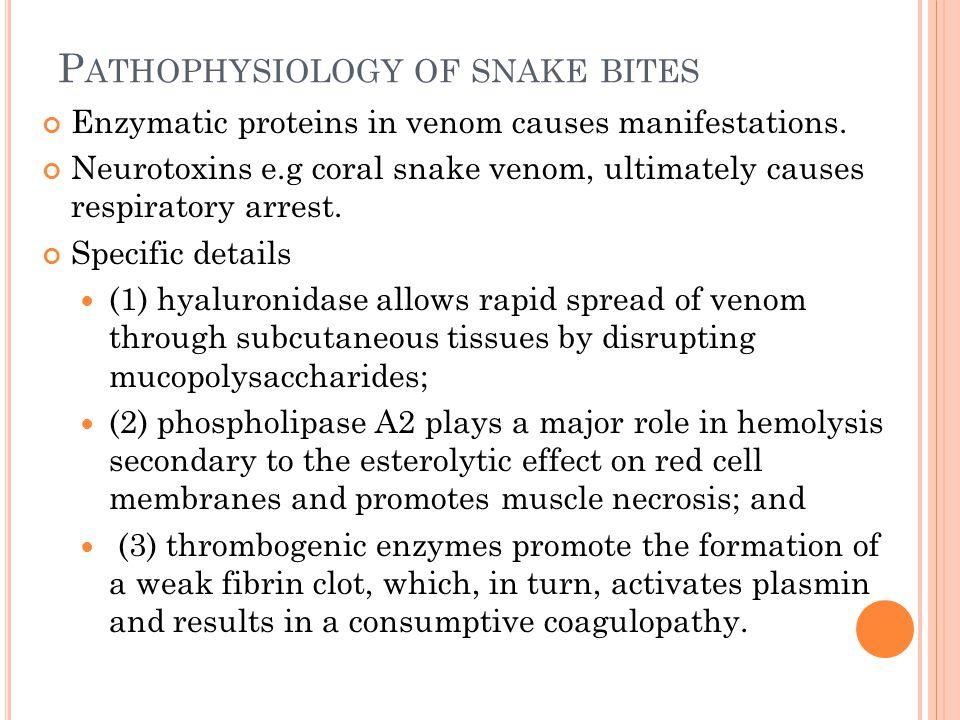 Pathophysiology of snake bites
