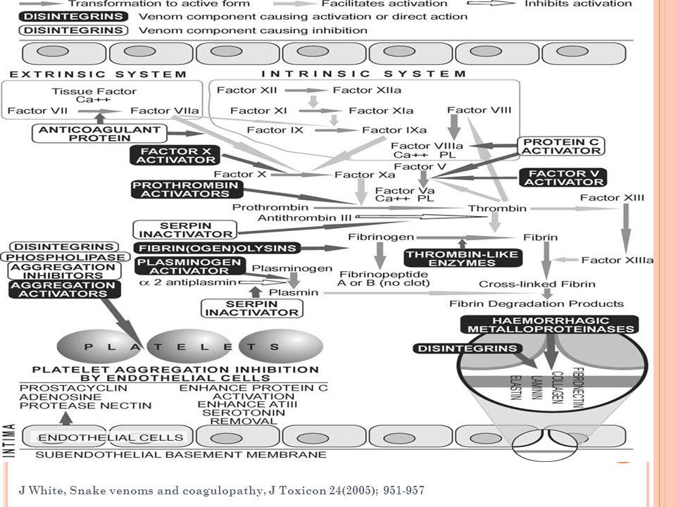 J White, Snake venoms and coagulopathy, J Toxicon 24(2005); 951-957